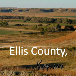 Development Opportunity Profile for Ellis County